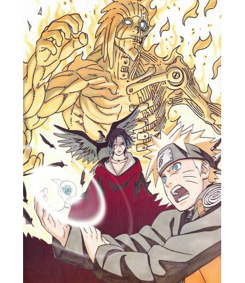 Póster Naruto 06