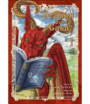 Dragón busca casa Nº 01
