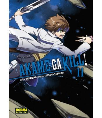 Akame ga Kill! Nº 11 (de 15)