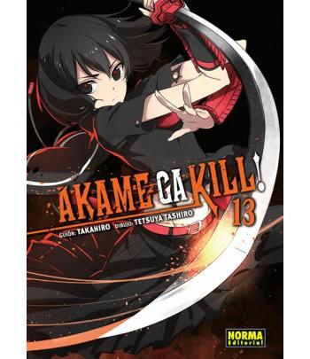Akame ga Kill! Nº 13 (de 15)