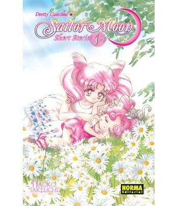 Sailor Moon Short Stories...