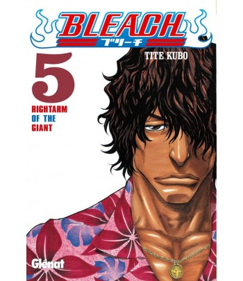 Bleach Nº 05