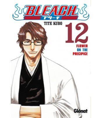 Bleach Nº 12