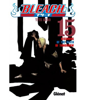 Bleach Nº 15
