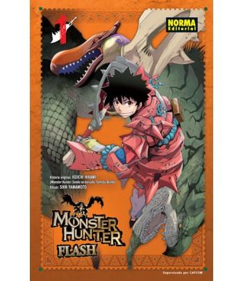 Monster Hunter Flash Nº 01...